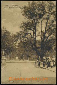 81307 - 1916 TEREZÍN (Theresienstadt) - cesta k Malé pevnosti, lid