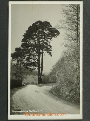 97475 - 1935 GABLITZ - fotopohlednice, partie u lesa, prošlá, dobr