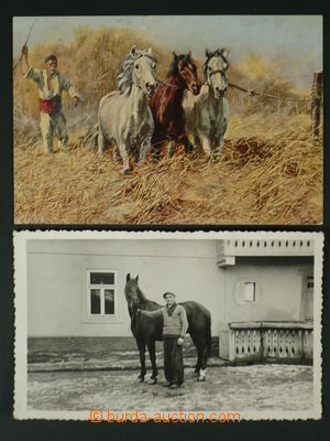 97483 - 1915-25 horses, comp. 2 pcs of Ppc, Un, good condition